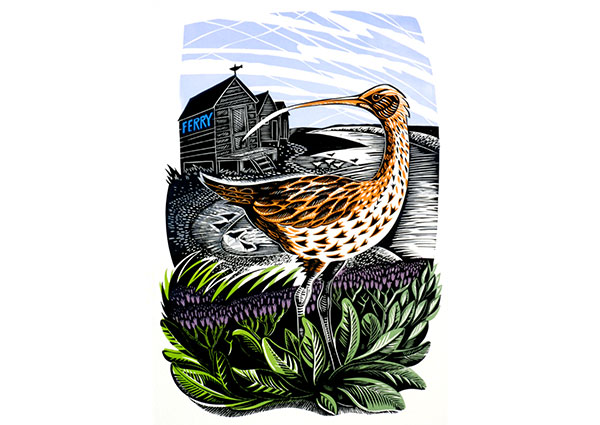 Walberswick Curlew (linocut), Greeting Card by Jeremy James - Thumbnail