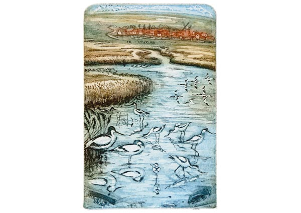 Avocets, Greeting Card -  Published by Orwell Press