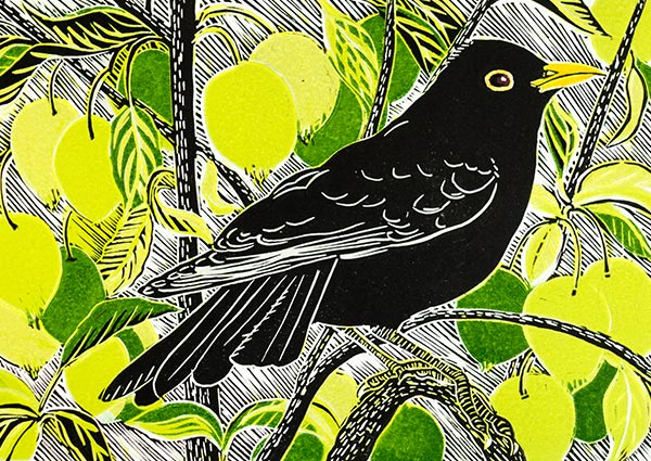 Blackbird and Crab Apples (linocut), Greeting Card - Part of Orwell Press\' Wildlife Greetings Card Collection.