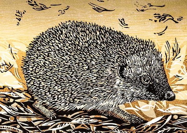 Autumn Hedgehog, Greeting Card by Linda Richardson - Thumbnail