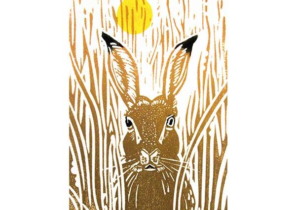 Brown Hare, Greeting Card by Linda Richardson - Thumbnail