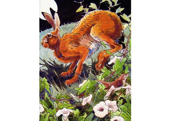 Hare and Nightingale, Greeting Card by Andrew Haslen - Thumbnail
