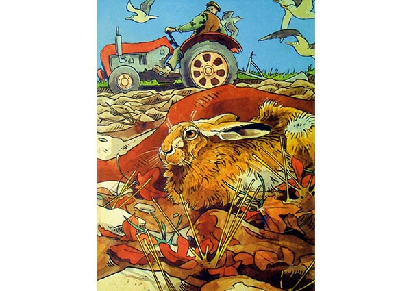 Hare and Tractor, Greeting Card by Andrew Haslen - Thumbnail