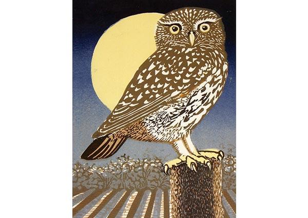 Little Owl, Full Moon (linocut), Greeting Card by Linda Richardson - Thumbnail